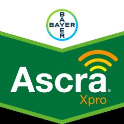 Ascra® Xpro