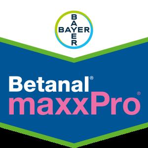 Betanal® maxxPro®