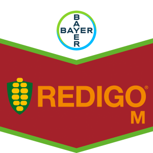 Redigo® M für die Inkrustierung von Maissaatgut