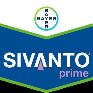 SIVANTO® prime
