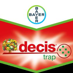 Decis® Trap Kirschfruchtfliege (Rhagoletis cerasi)