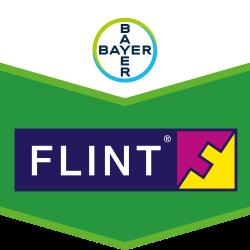 Flint®