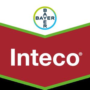 Inteco®