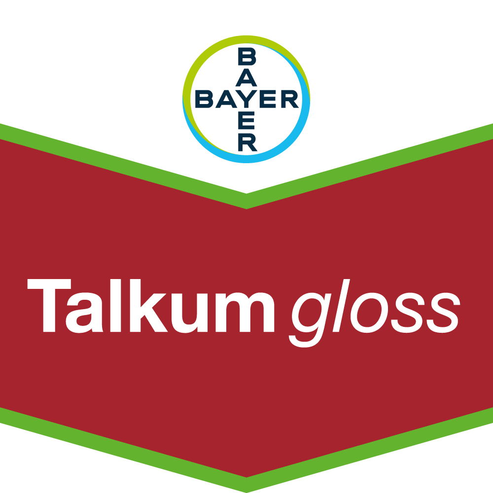 Talkum gloss