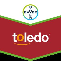 Toledo®