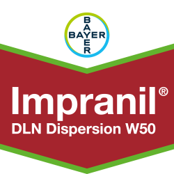 Impranil® DLN Dispersion W50