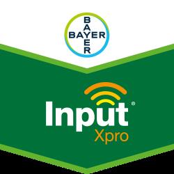 Input® Xpro