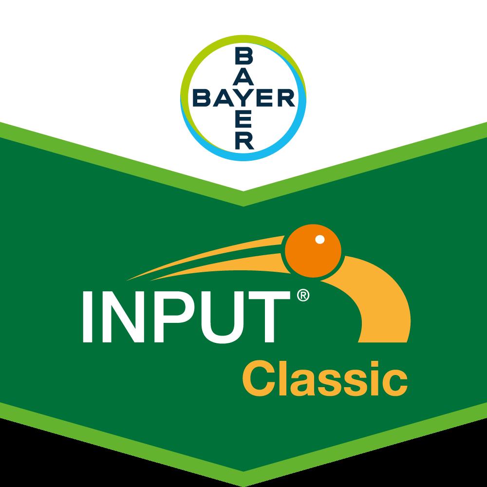 Input® Classic
