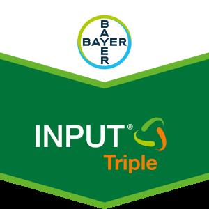 Input® Triple