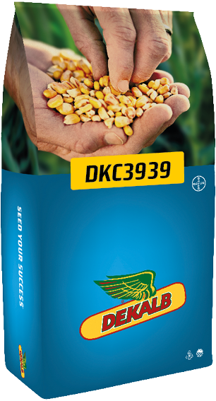DKC 3939